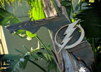 Lightning FL